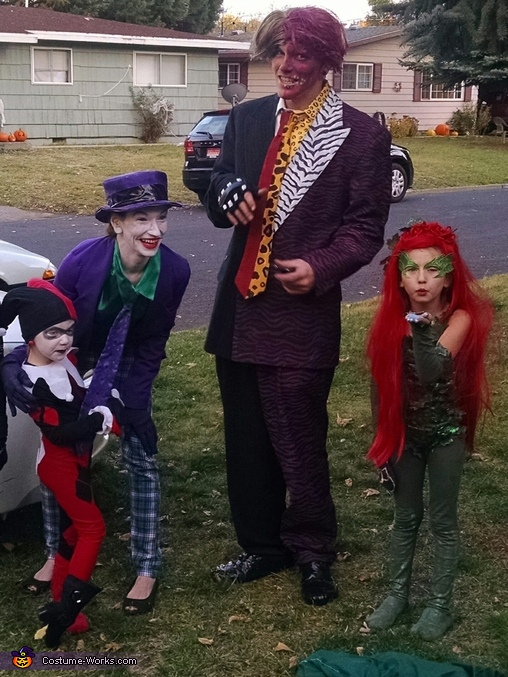 Batman Villains Family Costume