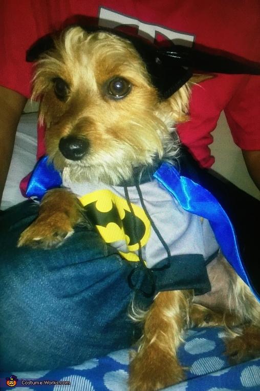 BatMax Costume