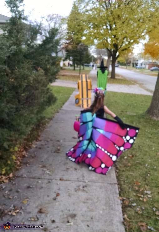 Beautiful Butterfly Homemade Costume