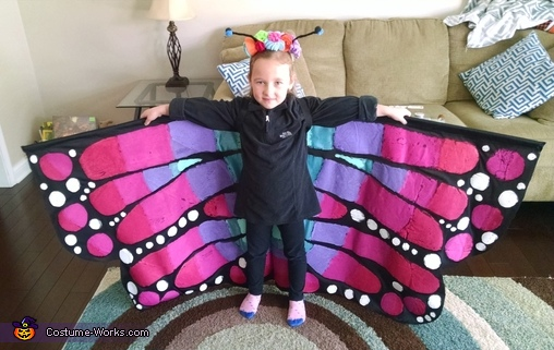 Beautiful Butterfly Costume
