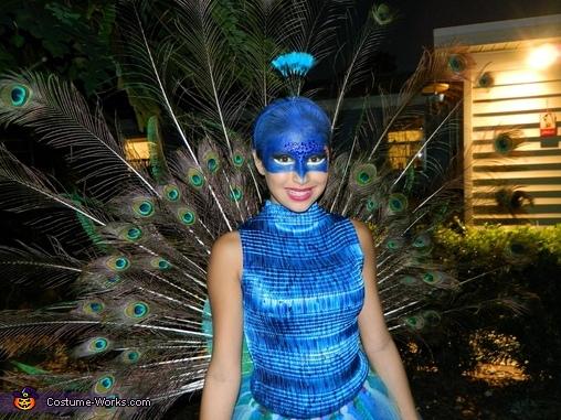 Beautiful Peacock Costume