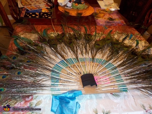 Beautiful Peacock Costume