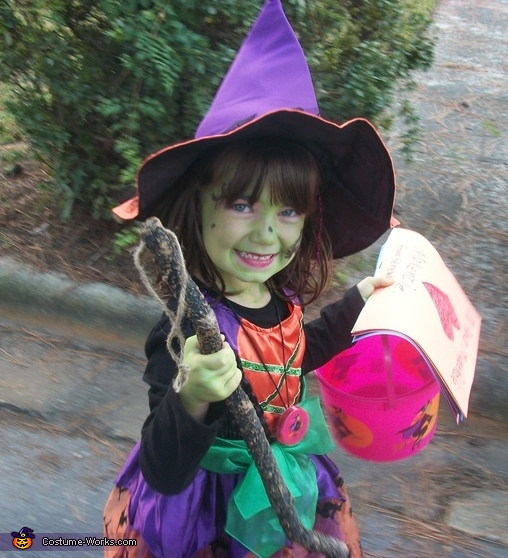 Homemade Beautiful Witch Costume