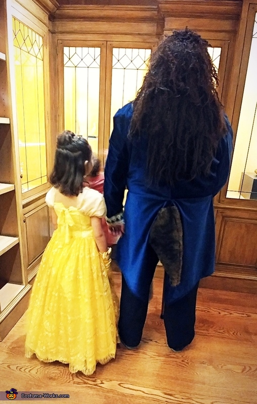 Beauty and the Beast (2), Beauty and the Beast Costume