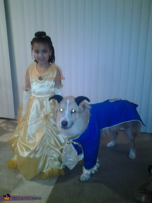 Beast, Beauty and the Beast Costume