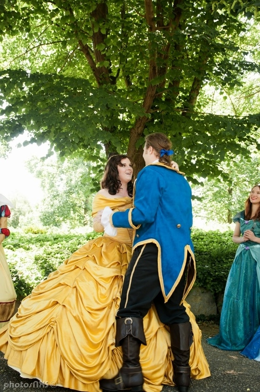 Beauty and the Beast Homemade Costume