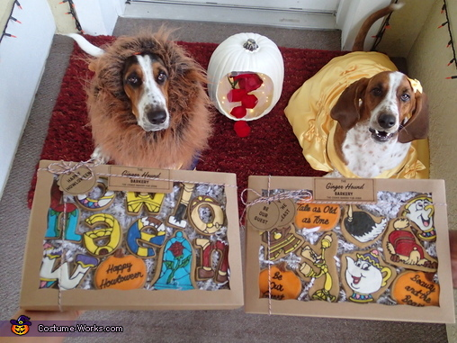 Howloween is not complete without treats!, Beauty and the Beast Costume