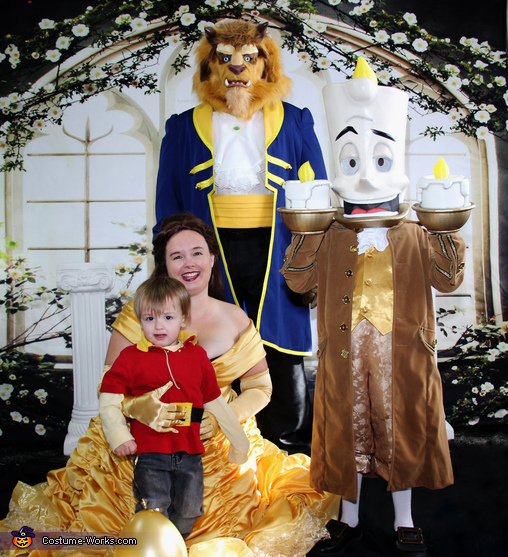 Beauty and the Beast Costume