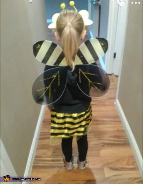 Wings, Bee Costume