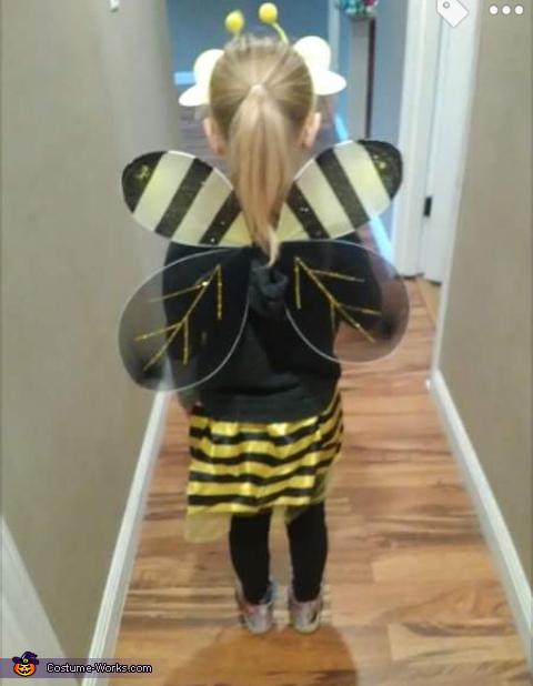 Wings, Bee Costume