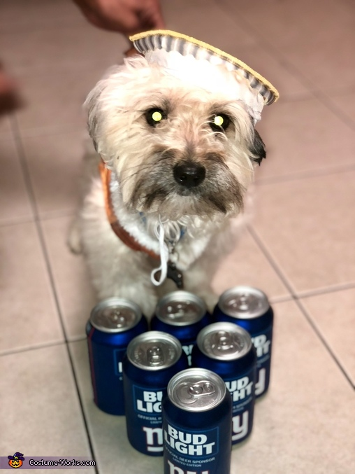 Blu with his beer friends !, Beer, Pong and Beer Costume