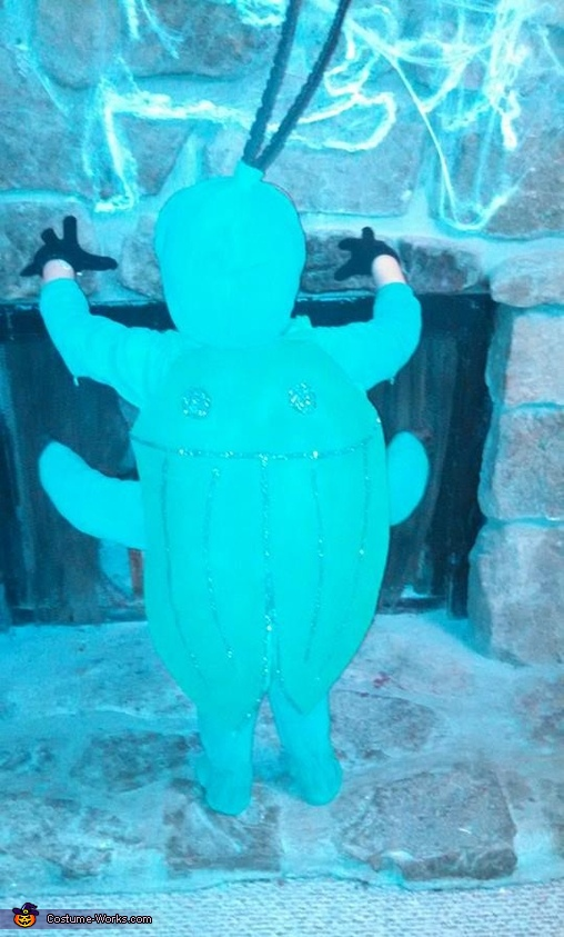 Here is his shell. , Beetle Costume