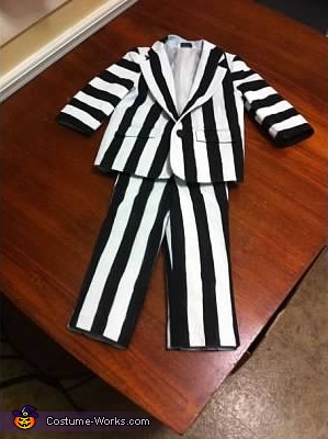 Just the costume, Beetlejuice Costume