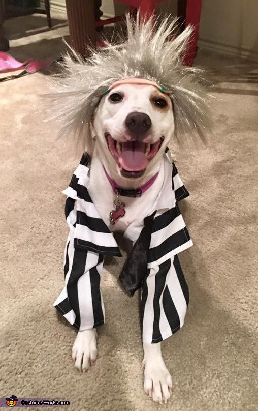 Beetlejuice Crew Homemade Costume