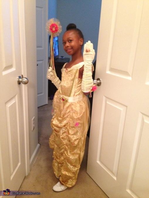 Belle Homemade Costume