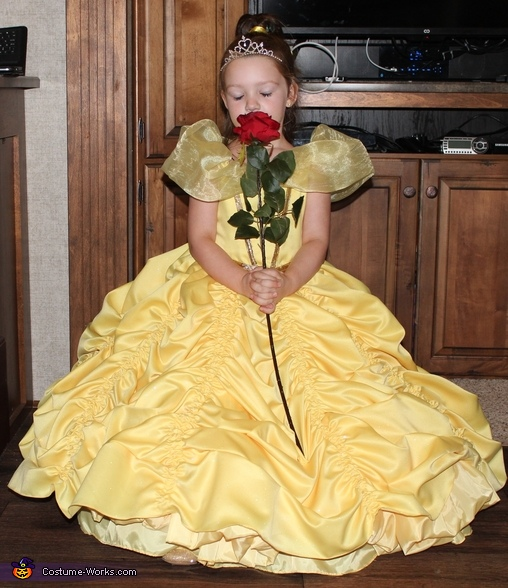 Belle Inspired Dress Homemade Costume