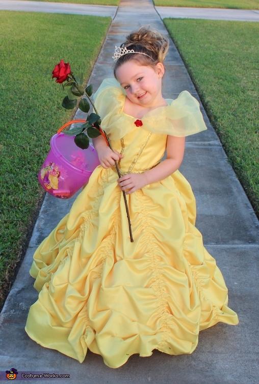 Belle Inspired Dress Homemade Costume