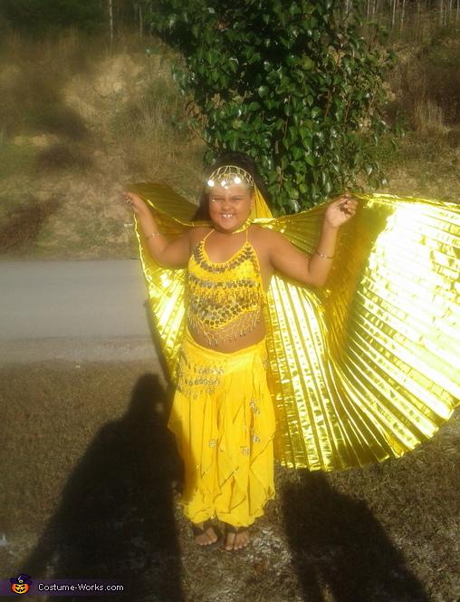 Bellydancer Costume
