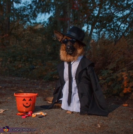 Blues Brother, Bewitched Costume