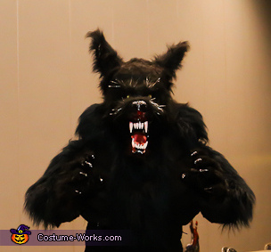 up close, Big Bad Wolf Costume