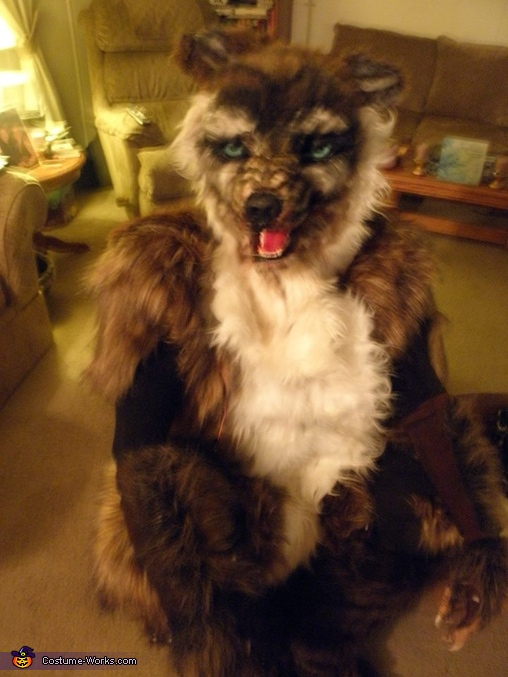 Closer Look, Big Bad Wolf Escaped Costume