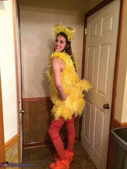 Big Bird and Oscar the Grouch Homemade Costume
