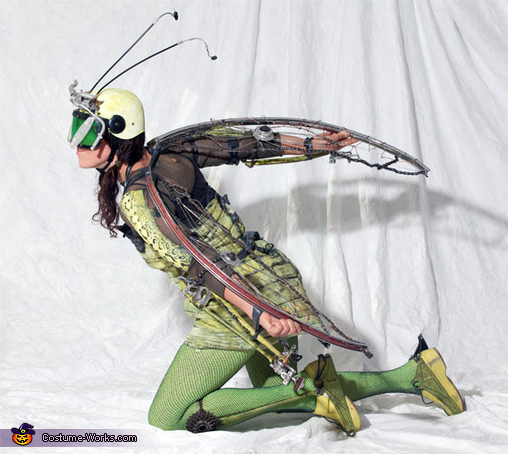 Bikehopper Costume