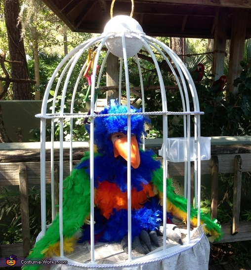 Bird in a Cage Costume