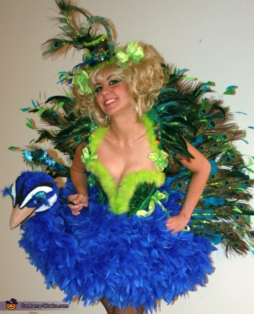 Niece - as Peacock, Birds of a Feather Costumes