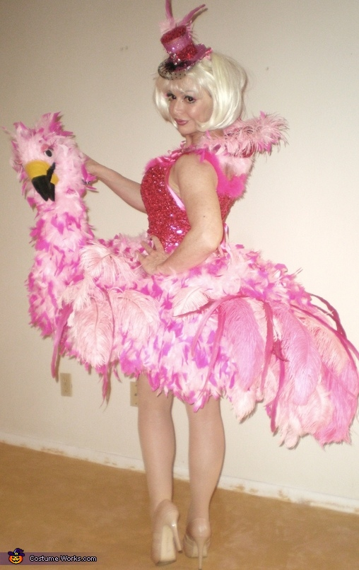 Me - as Flamingo, Birds of a Feather Costumes