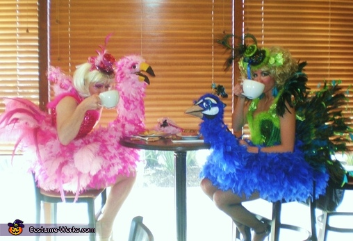 Together sipping coffee! Sitting comfortably in our costumes!, Birds of a Feather Costumes