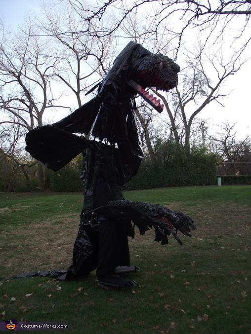 Black Dragon raised from side., Black Dragon Costume