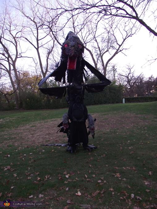 Black Dragon raised from front., Black Dragon Costume