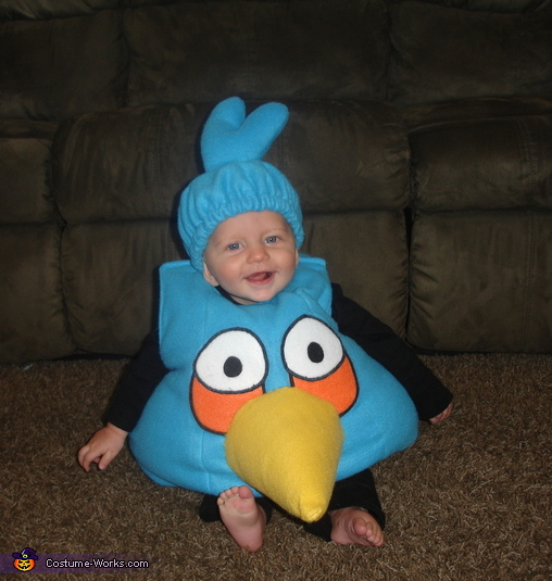 Blue Angry Bird, Angry Birds Costumes