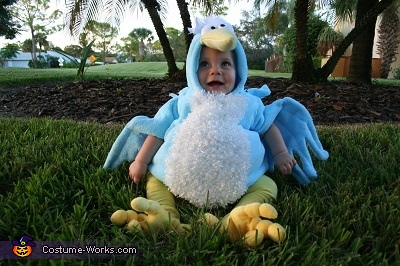 Baby Blue Bird, Blue Bird Costume