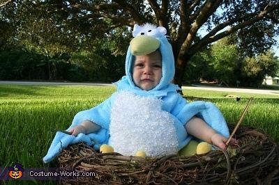 Angry Bird, Blue Bird Costume