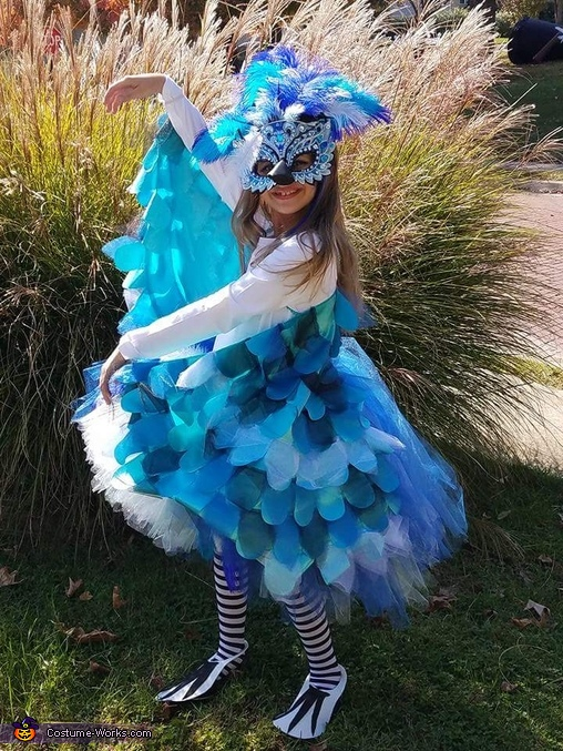 Bluejay Costume
