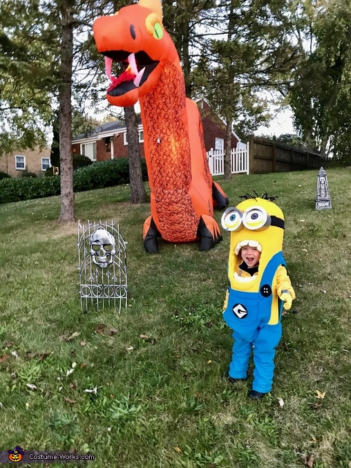 Minion and the dragon, Bob the Minion Costume