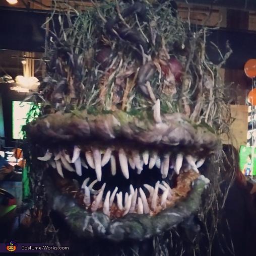 Love it!!, Bog Swamp Monster Costume