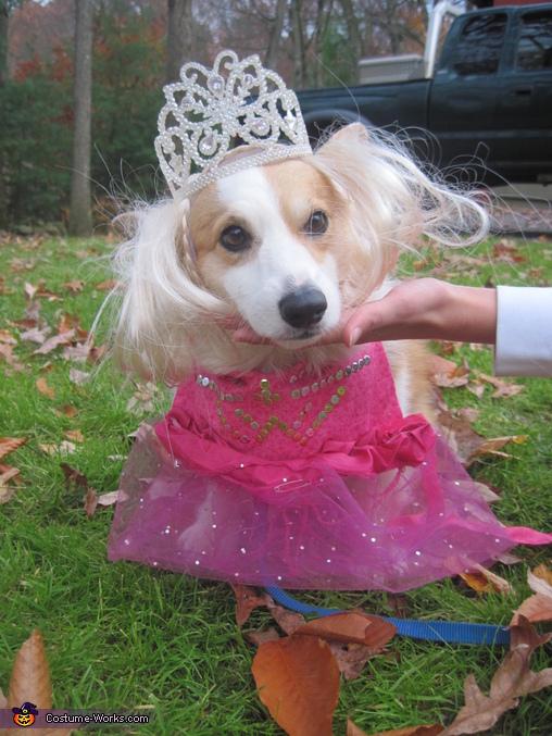 Bonnie Boo-Boo 2, Bonnie Boo-Boo Costume