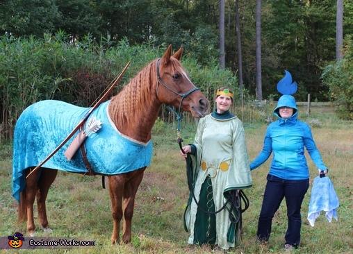 Brave Trio Costume