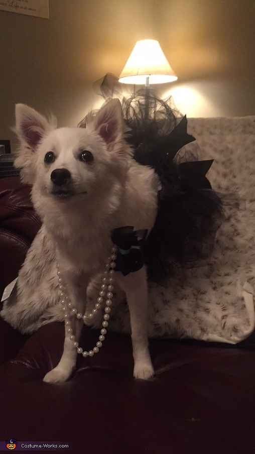 Mommy I love my tutu and beautiful bows & pearls, Breakfast at Tiffany's Costume