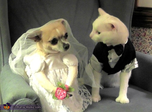 Bride and Groom Costume