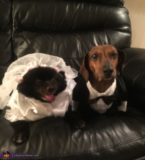 Bride & Groom Costume