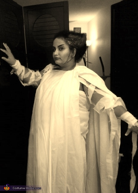 Original Diy Bride Of Frankenstein Costume