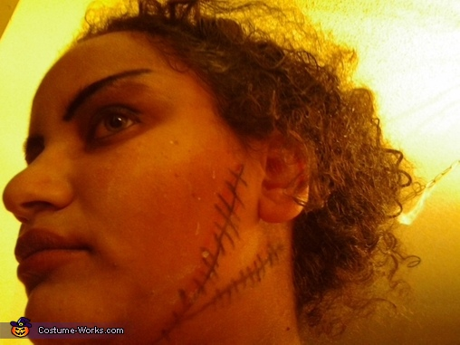 the make up, Bride of Frankenstein Costume