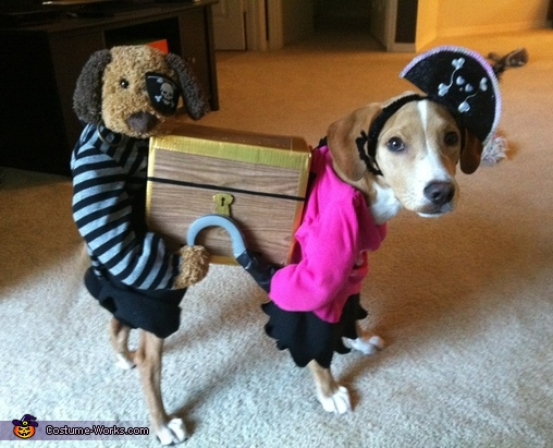 pirates carrying a treasure chest creative costume for dogs. Black Bedroom Furniture Sets. Home Design Ideas