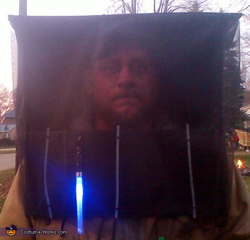 My husband ... He wasn't thrilled. (Note the flashing light in the front), Bug Zapper Costume