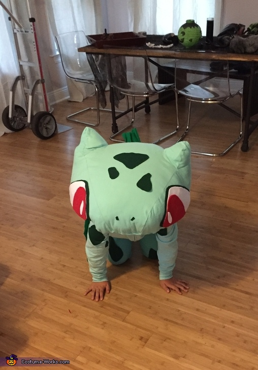 Bulbasaur from Pokemon Homemade Costume