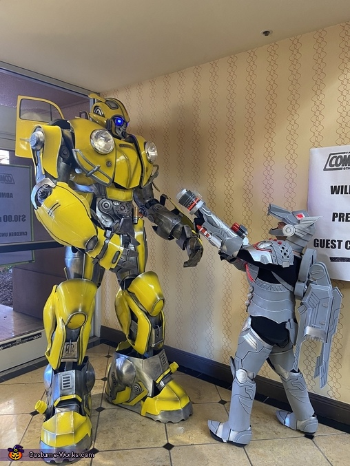 Fan encounter, Bumble Bee Costume